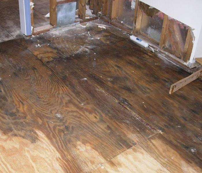Water Damage Faster to your Ski Country Water Damage Event