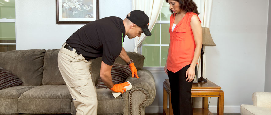 Breckenridge, CO carpet upholstery cleaning
